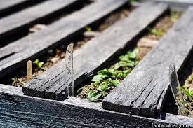 greenhouse gardening ideas diy tips