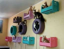 Cat Room Ideas Every Crazy Cat Lady Wants To Get Her Hands On Cool Cat Tree Plans Cat Room Animal Room Crazy Cats