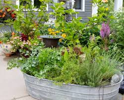 Herb Trough | Gasterland garden | Rhonda Fleming Hayes