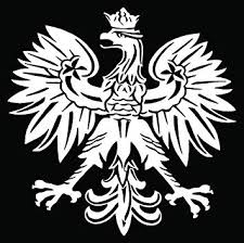 Amazon Com Polish Eagle Emblem Car Truck Window Bumper Vinyl Graphic Decal Sticker 8 Inch 20 Cm Tall Gloss White Color Automotive