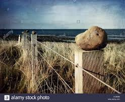 Rocks And Rollers Someone Has Spent Time Topping Each Of These Fence Stock Photo Alamy