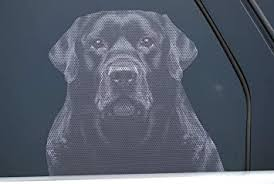 Amazon Com Doggie In The Window Car And Truck Window Dog Decal Black Labrador Retriever Automotive