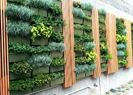 Herb Walls In San Diego Herbs Are An Amazing Group Of Plants Both Ornamental And Edible They Can Add Bea Herb Wall Vertical Garden Diy Vertical Garden Design
