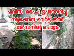 vertical garden ideas malayalam