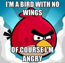 Angry Birds | Funny pictures, Funny memes, Funny