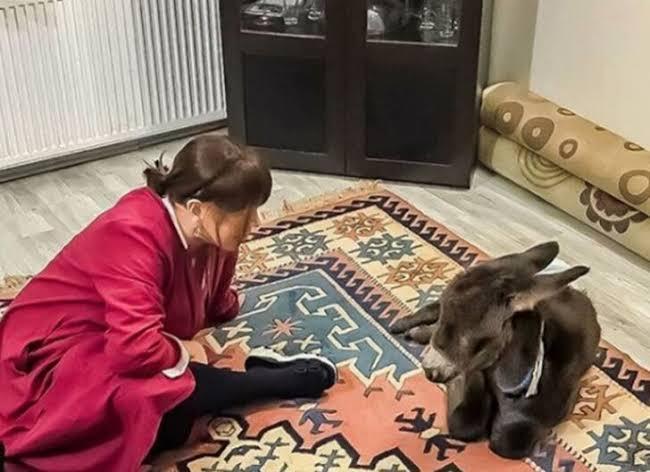 Sezen Aksu'nun Kanlıca'daki yalısında sıpası Boza'yla samimi pozları