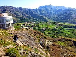 صور من اليمن خلفيات من اليمن دلع ورد