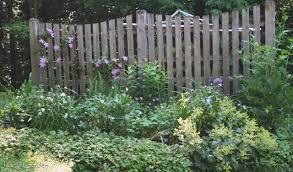Fence Border Second Draft Jean S Garden