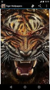 Tiger Wallpapers For Android Apk Download