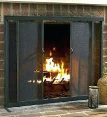 astonishing modern fireplace doors fire