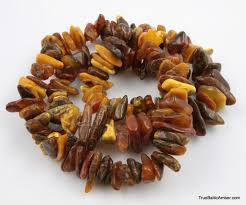 vine baltic amber necklace