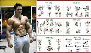 8 weeks workout program for beginners