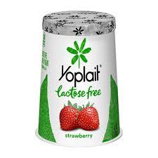 lactose free strawberry flavor yogurt