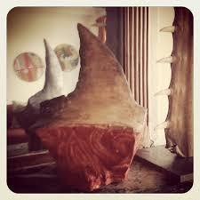 shark finning alexia delrieu
