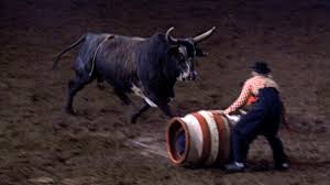 An Honest Bull Session with Carroll Ballard | The Current | The ...