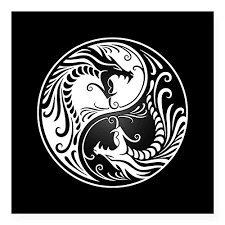 Cafepress White Yin Yang Dragons With Buy Online In Cote D Ivoire At Desertcart