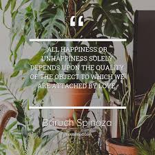 all happiness or unhappiness so baruch spinoza about happiness