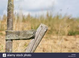 Close Up Of Wooden Post By Tree Trunk On Field Against Sky Stock Photo Alamy