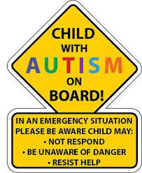 Autism Safety Car Truck Decal Sticker Autism Awareness America
