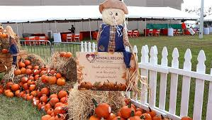 Kendall Regional Medical Center S Annual Pumpkin Patch Party Attracts Big Crowd Kendall Regional Medical Center