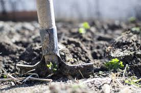 top 5 gardening franchises for you to grow