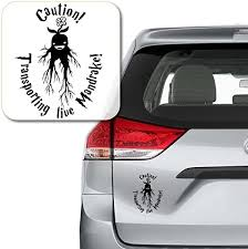 Amazon Com Yoonek Graphics Caution Transporting Live Mandrake Harry Potter Decal Sticker For Car Window Laptop And More 997 7 X 5 Black Automotive