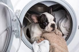 Máy giặt nào tốt? 10 dòng máy giặt tốt nhất 2020 - BestSpy Vietnam