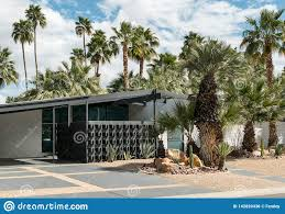 Classic Midcentury Architecture Palm Springs Stock Photo Image Of Agave Fence 142820436