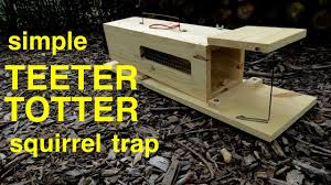humane teeter totter squirrel trap