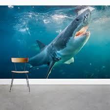 Great White Shark Wall Mural Great White Wallpaper