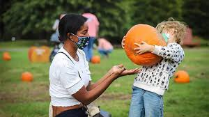 Pumpkin patch Philadelphia: Where to pick your own, take hayrides and  explore farm mazes in 2020 - On top of Philly news