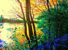 autumn pictures beautiful landscape
