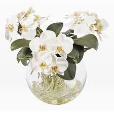 faux orchid in vase white
