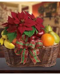 fruit gift basket in st petersburg fl