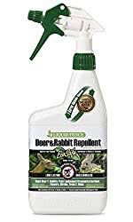 10 Best Deer Repellents 2020 Buying Guide And Reviews