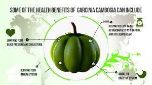 demerits of garcinia cambogia fruit