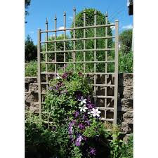 inspirations awesome trellises for