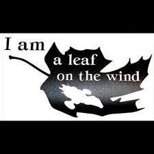 I Am A Leaf On The Wind Firefly Serenity Themed Vinyl Decal Original Design Ebay