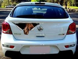 Best Selling Horse Car Decal For When Your Best Friend Should Be Wi I Love My Horse More