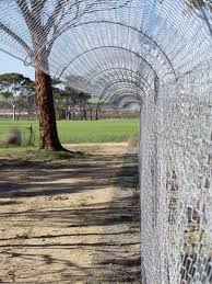 Cat Proof Chain Link Fence Google Search Cat Proofing Cat Fence Chain Link Fence