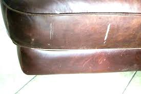 repair cat scratch on leather furniture