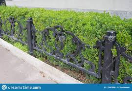 A Low Wrought Iron Fence Design In Front Of A Neatly Cut Boxwood Hedge Neatly Pruned Bush Wall Stock Image Image Of Hedge Street 179478801