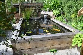 attracitve fish pond in your backyard