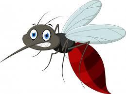 Mosquito Cartoon | Free Vectors, Stock Photos & PSD