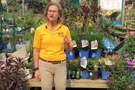garden nurseries landscaping services