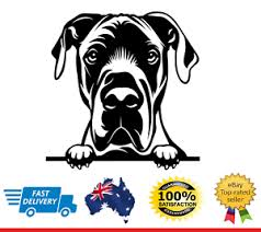 Great Dane Peeking Dog Car Decal Vinyl Sticker Ebay