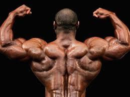 a sle bodybuilding t