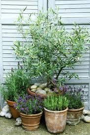 486 best garden pots and art images