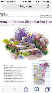drought tolerate slope garden also