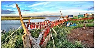 Alaska Photo Mosaic - Entry Samuel Towarak Unalakleet, AK Dry fishing  hanging in Unalakleet, AK during the summer